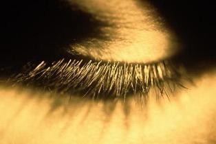 Una visión realmente objetiva <p><p>